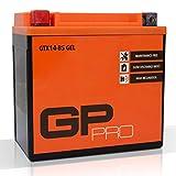 GP-PRO GTX14-BS 12V 14Ah Gel-Batterie (Ähnlich YTX14-BS / 51214) (Wartungsfrei / Versiegelt) Akkumulator Motorrad Motorradbatterie