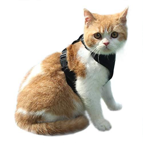 EXPAWLORER Arnés de Gato a Prueba de Escape, arnés de Malla Suave Ajustable para Gato Chaleco para pasear a Mascotas