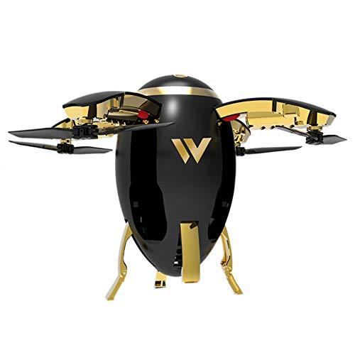 ZWRJZNB UAV Telecomando Mini Drone Elicottero Furious 2.4G WiFi FPV Rugby UAV Rc Drone Quadcopter con 720P HD Camera