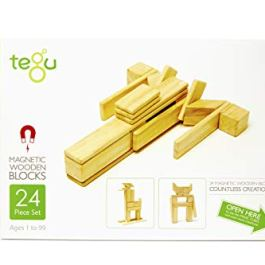 24 Piece Tegu Magnetic Wooden Block set, Jungle