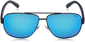 Polo-Sonnenbrille-PH3110