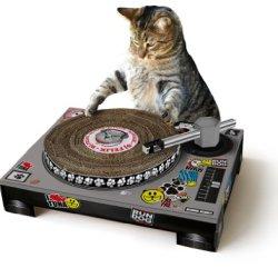 SUCK UK Katzenspielhaus