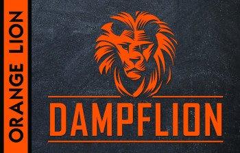 Dampflion Aroma 20ml / Orange Lion