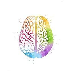 Cuadro Sobre Lienzo 100 x 130 cm: Brain Anatomy Biology de Mod Pop Deco