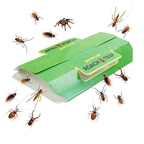 Trapweb Trappola Adesiva per scarafaggi, con Esca, Non tossica e Ecologica, 12 Pezzi
