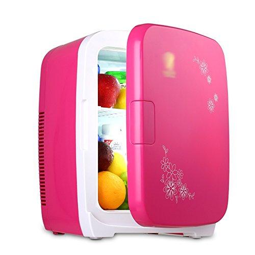 Frigorifero portatile Mini frigo da 15 Litri per Auto/casa - Mini Frigorifero Domestico/Frigorifero...