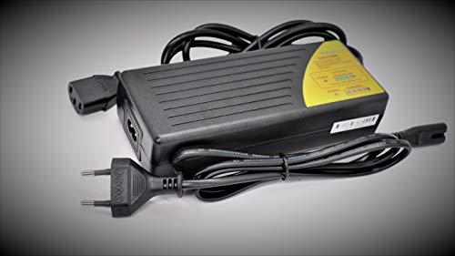 caricabatterie 36v bici/caricabatterie 36v piombo/caricabatterie 36v bici elettrica/caricabatterie...