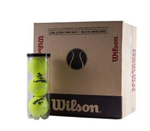 WILSON Palline da Tennis/Paddle Tennis TP Plus