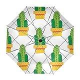 Paraguas Originales Con Apertura Automática Cactus Verde En Maceta Naranja