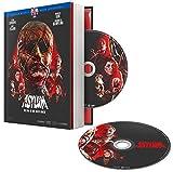 Asylum [Édition Collector Blu-Ray + DVD + Livret]