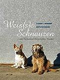 Weis(s)e Schnauzen: ...vom Zusammenleben mit alten Hunden