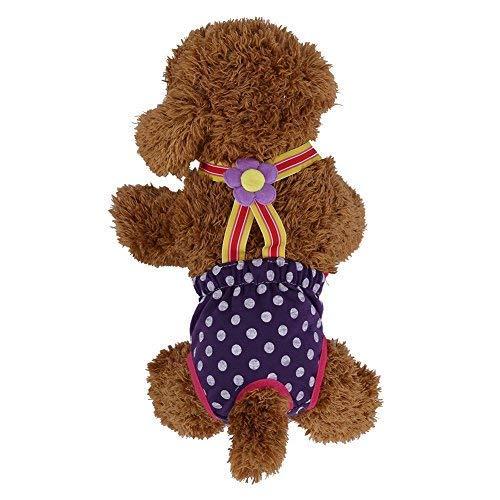 Cane pannolini femmina, Confortevole Cucciolo di Cane Pet Pantaloni pannolino fisiologica Sanitario Mestruale Reggicalze intimo Pantaloni 6 Dimensioni, (M)