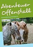 Abenteuer Offenstall: Private Pferdehaltung auf dem eigenen Hof