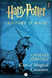A Journey Through Care of Magical Creatures (A Journey Through... Book 4) (English Edition)