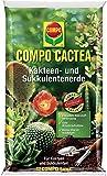 6 Unidades De Mezcla Para Cactus