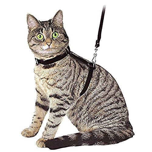 Ducomi Silvestro - Arnés Ajustable con Correa para Gatos, Conejos y Cachorros - Ideal en Paseos y Visitas al Veterinario - Accesorio para Mantener a Sus Mascotas Seguras (Negro)
