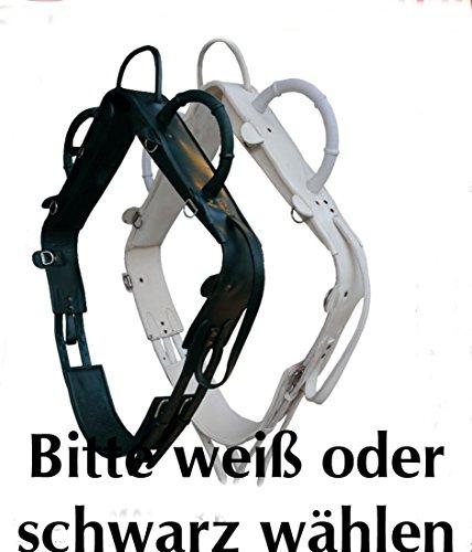 AMKA Voltigiergurt MASTER Gurt zum Voltigieren Gr. Vollblut | Voltigierbedarf | Vaulting | Surcingle