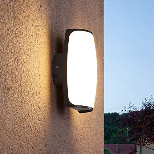 LOCXO Lampada da parete a LED Esterna Impermeabile ad alta luminosità Cortile Avenue Porta luci a parete anteriore Illuminazione interna Corridoio Avenue Applique Apparecchio a parete per veranda este