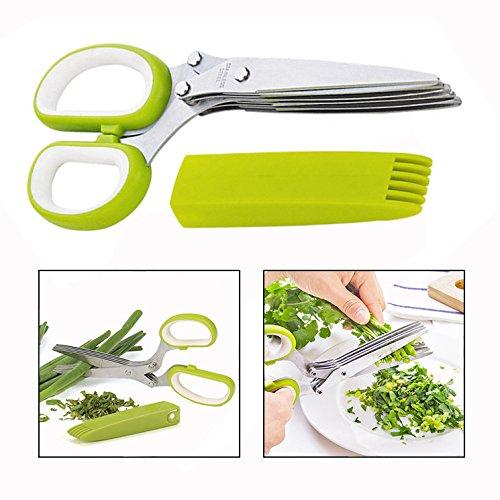 Itian Tijeras para hierbas aromáticas - acero inoxidable, con 5 cuchillas de acero inoxidable y con peine de limpieza