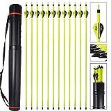 MEJOSER Bogenpfeile Carbon 30 Zoll für Bogenschießen mit 2 Zoll Vanes Powerflight Jagdpfeile für Compoundbogen Recurvebogen Langbogen mit pfeilköcher (a)