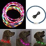 iEFiEL Hunde LED Leuchthalsband