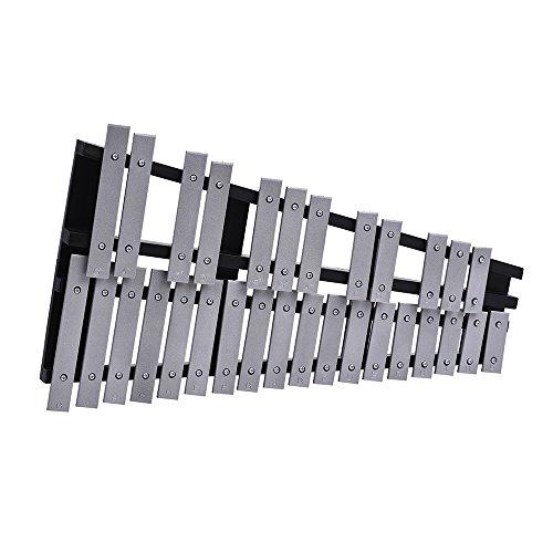 Xilófono Plegable 30 Nota Glockenspiel para niños