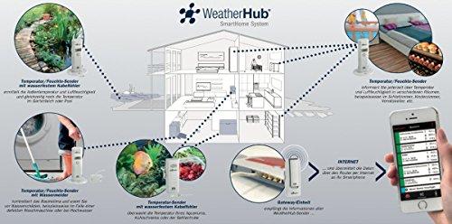 TFA Dostmann Weather Hub 54Maison Surveillance Température Humidité émetteur de porte fenêtre Détecteur d'eau Capteurs TFA 31.4002.02.54 24