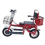 Tricycle Electrique Scooter Pliant Voiture Electrique Adulte Handicapé 350W Puissance Moteur, 48V Tension, 20AH Batterie, 3 Changement de Vitesse, kilométrage Maximum 55Km