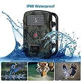LGFB Staubdichte 60-Grad-Weitwinkel-Jagdkamera 8MP 720P Ultra-High-Definition-Wildlife-Videokamera mit Bewegungsaktivierung Infrarot-Nachtsicht mit 32-GB-Karte