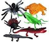 Insect Polybag Perfect Christmas Stocking Filler Frog, Grasshopper, Spider, Lizard and Beetle