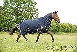 Gallop Trojan 100g Chemise de pluie avec col full - EU 95cm