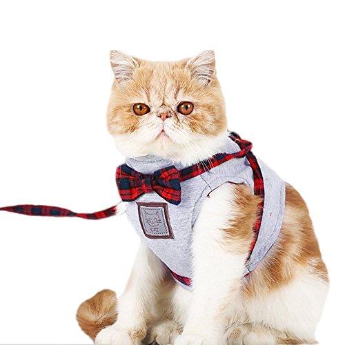 Decdeal - Arnés de Chaleco con Correa para Gatos, Estilo Escocés