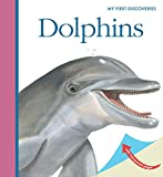 Dolphins (My First Discoveries)