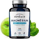Magnesium Végétal plus Vit B6 B5 B8 | Malate et Bisglycinate de...