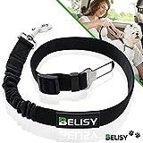 BELISY Hunde-Sicherheits-Gurt fürs Auto