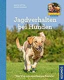 Jagdverhalten bei Hunden: Der Weg zum zuverlässigen Begleiter