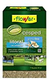Flower 10786 - Semilla césped litoral grama fina, 1 kg