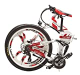 eBike_RICHBIT RLH-860 Vélo Électrique pliant vélo de montagne MTB e vélo 36V * 250W 12.8Ah Lithium - Fer Batterie 26inch Magnesium Integrated Wheel (Rouge)