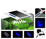 Sun Sun LED Light AD-200 - Plafoniera a braccio per nano acquari, mini reef, con touch screen, sonda, display e timer