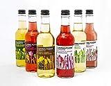 Loving Foods Organic Kombucha & Jun-Kombucha Mixed Case (330ml) RAW | UNPASTEURISED | Alive (6 x Bottles)