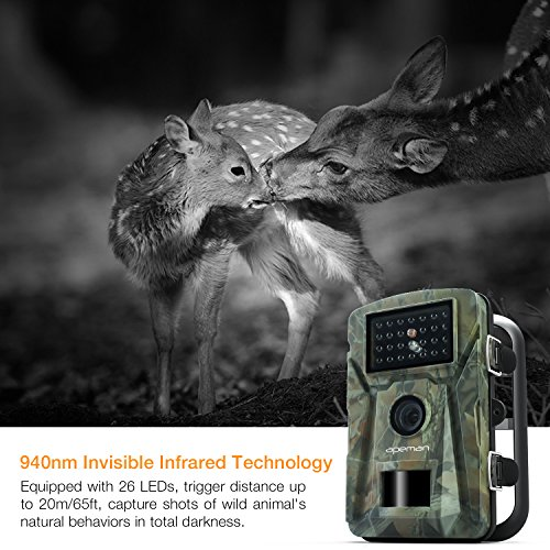 Fitted with 26pcs 940nm low-glow passive infrared detectors, you can capture clear night images without the light or sound frightening the animal away.
