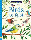 Birds to Spot (Usborne Minis)