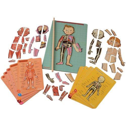 Janod J05491 - Bodymagnet, Gioco Educativo Magnetico, Corpo umano