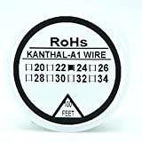 Kanthal A1 Typ Widerstand Draht 100ft (30m) Spule 22-32G AWG (24G)