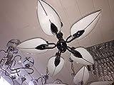 Candelabros 5Brazo König licher araña iluminación de luz de lámpara cristal