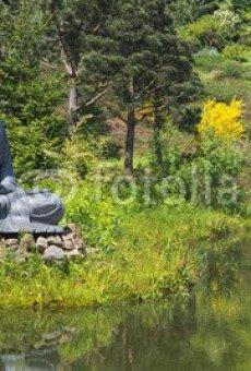 Figura de Buda en el jardín en el estanque como decoración (65158165)