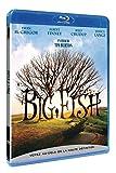 Big Fish [Francia] [Blu-ray]