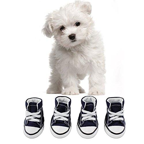 KEESIN Puppy Haustier Hund Rutschfeste Leinwand Sport Schuhe Outdoor Sneaker Stiefel Causal Schuhe, Gummi Sohle + Soft Cotton Inner Stoff (#2, Blau)