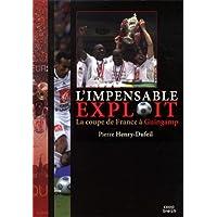 L'impensable exploit la coupe de France a Guingamp