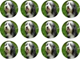 The Lazy Cow Bearded Collie edible cake toppers (12 of 38mm 1.5inch) #25